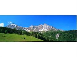 6111 Задник Альпийское предгорье (из 3-х частей)