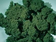 76977 Флок темно-зеленый 1000 мл  - фото 7730