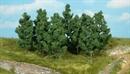 1220 Черный тополь 9см (12шт) деревья