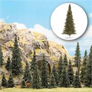 6470 Деревья Пихты 50-135мм 15шт.