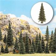6475 Деревья Пихты 60-135мм 10шт.