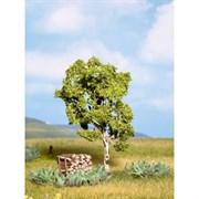 21640 Береза 11,5 см деревья