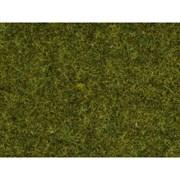 07117 Трава лесной луг h=9мм (50г)