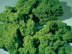 76976 Флок светло-зеленый 1000 мл