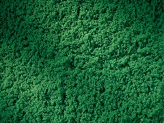 76670 Флок темно-зеленый (лист 150х250мм)