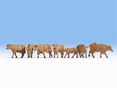 15727 Коровы коричневые