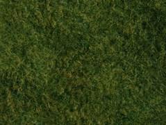07280 Фолиаж лесной луг 20х23см