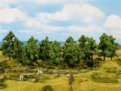 24600 Лиственные деревья 8шт, 10-14см