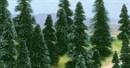 6503 Ели деревья 10шт.  30-75мм  N