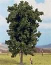 25895 Каштан деревья 19см